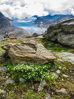 High Mountains, South Tyrol, Alpine, Nature, Landscape