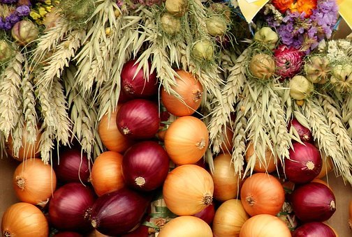 Onion, Vegetables, Composition, Decoration, Red, Food