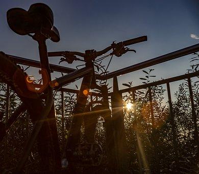 Nature, Landscape, Bicycle Tour, Photography, Sunset