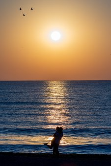 Beach, Couple, Love, Sunrise, Ocean, Sea, Summer, Woman