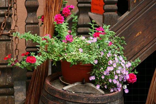 Flowers, Planters, Decoration, Historic Center, Alsace