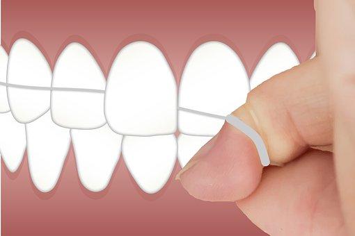 Dental, Floss, Teeth, Cleaning, Clean, Hygiene