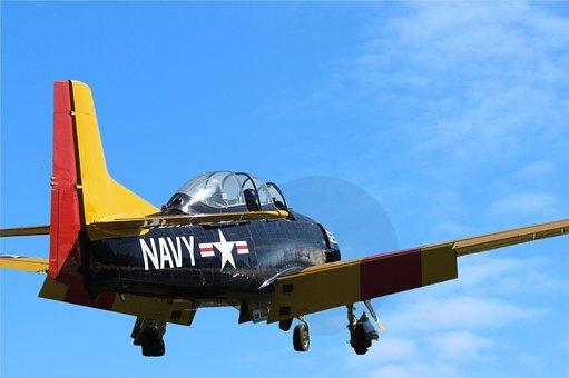 Warbirds, Airplane, Plane, Aeroplane, Military, Wings