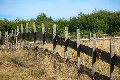 Pasture Fence, Pasture, Fence, Wood Fence, Meadow, Post