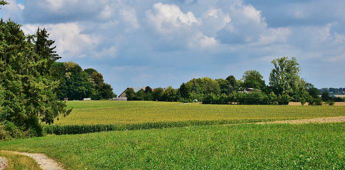 Landscape, Rural, Scenic, Nature, Summer, Rest, Idyll