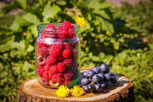 Raspberry, Summer, Red, Vitamins, Nutrition, Fresh