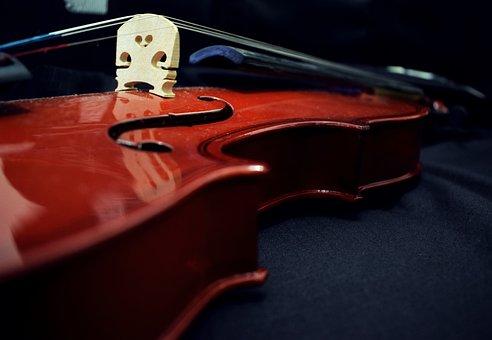 Violin, Music, Musical, Design, Musician, Concert