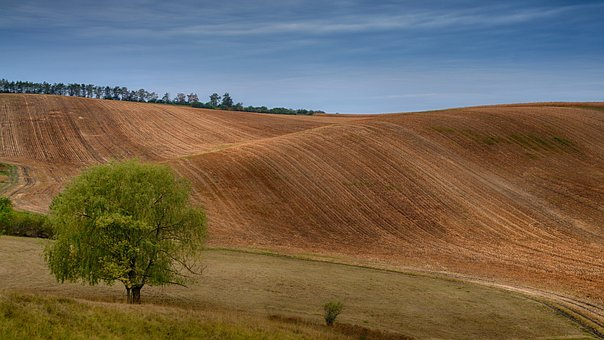 Moravia, Czech Republic, Field, Landscape, Waves
