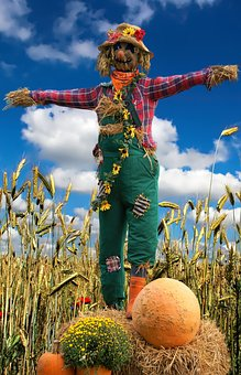 Scarecrow, Grain, Field, Straw, Agriculture, Cereals