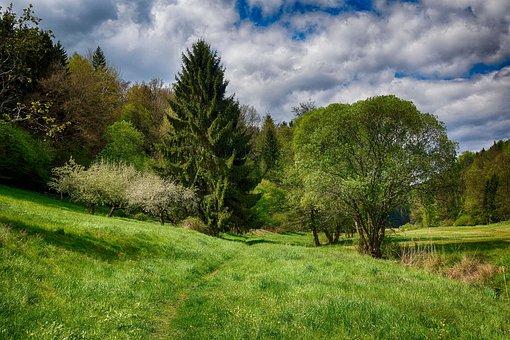 Spring, Green, Hdr, Nature, Summer, Landscape