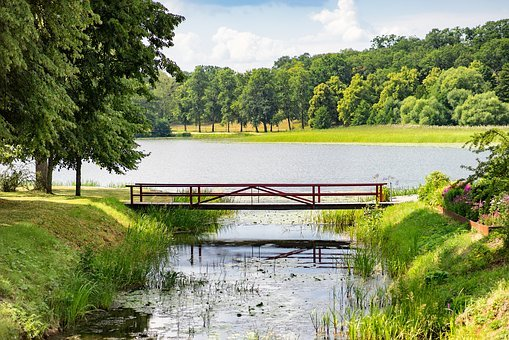 Bridge, Lake, Forest, Water, Nature, Landscape, Summer