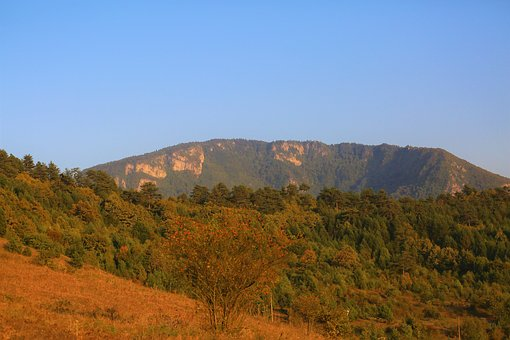 Mountain, Landscape, Forest, Nature, Trees, Rural