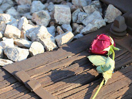 Red Rose, Railway, Love Asleep, Lost Love, Touching