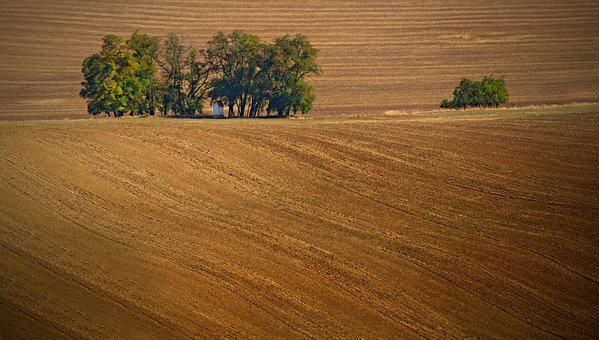 Moravia, South Moravia, Czech Republic, Field, Waves