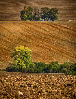 Moravia, South Moravia, Czech Republic, Landscape