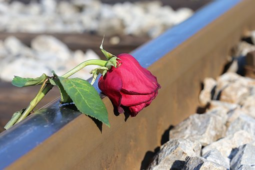 Stop Youth Suicide, Sad Red Rose On Rail, Lost Love