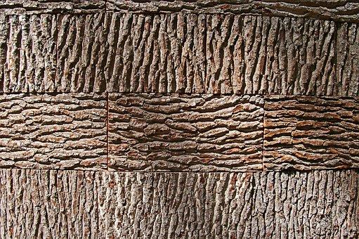 Tree Bark, Background, Bark, Wood, Nature, Structure