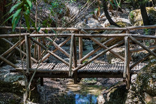 Bridge, Footbridge, Wood, Forest, Nature, Trees