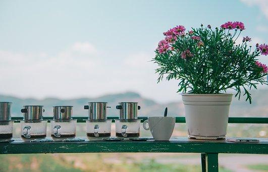 Flower, Coffee, Table, Cup, Drink, Caffeine, Beverage
