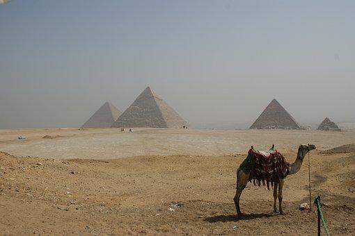 Egypt, Giza, Pyramids, Sand, Camel, Landscape