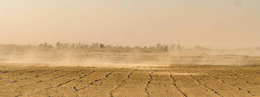 Sandstorm, Desert, Sand, Wind, Dry, Oed, Lonely