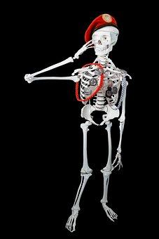 Human, Personal, Skeleton, Bundeswehr, Thinking