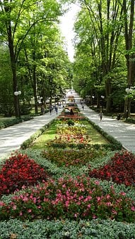 Polanica, Poland, Medical Spa, Tree, Green, Nature