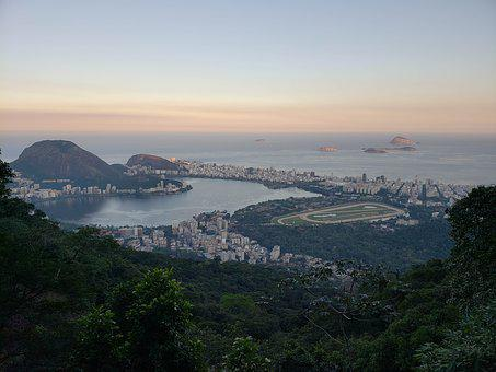 Rio De Janeiro, Wonderful City, Forest, Jockey, Pond