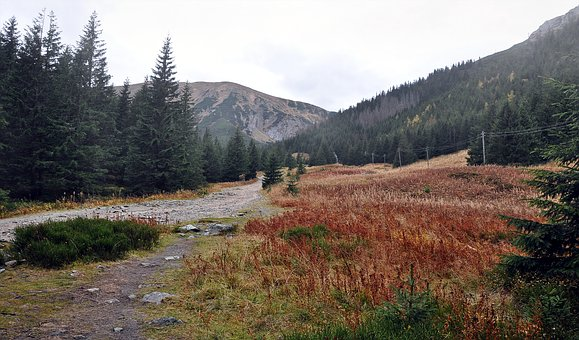 Mountains, Tatry, View, Trail, The Path, Clearing