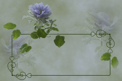Flowers, Clematis, Blue, Nature, Frame, Climber Plant