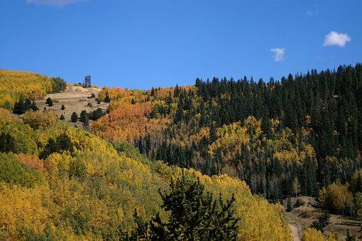 Gold Mine, Cripple Creek, Colorado, Outdoors, Woods