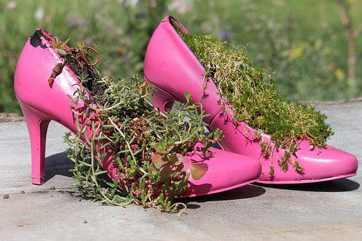 Shoes, Women's Shoes, Pumps, Pink, Clothing, Decoration