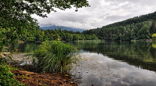 Lake, The Alps, Clouds, Mood, Forest, Landscape, Summer