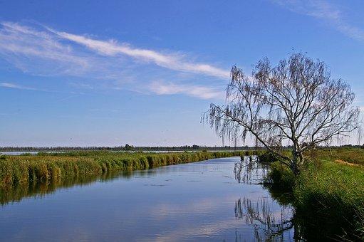 Nature Reserve, Kamp, Landscape, Mood, Nature, Sky