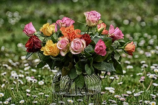 Roses, Bouquet, Flowers, Vase, Colorful, Gift, Meadow