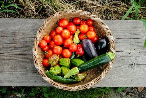 Harvest, Tomato, Pumpkin, Natural, Fresh, Organic