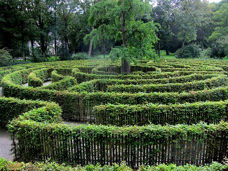 Labyrinth, Green, Trees, Nature, Geometric, Garden