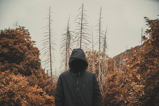 Veiled, Dead, Orange, Forest, Trees, Old, Scary