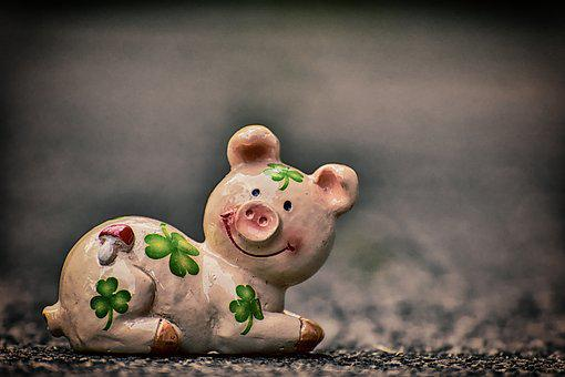 Luck, Piglet, Lucky Pig, Cute, Lucky Charm, Sow