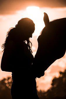 Sunset, Silhouette, Afterglow, Evening, Horse, Animal