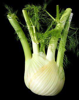 Fennel, Vegetable, Healthy, Vegetarian, Food