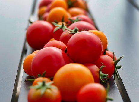 Tomatoes, Red, Vegetables, Food, Healthy, Ripe, Bio