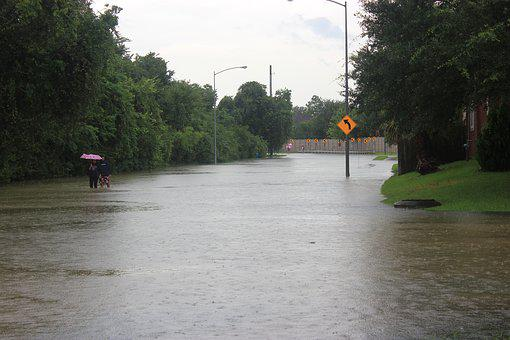 Hurricane Harvey, Flood, Couple, Street, Houston, Water
