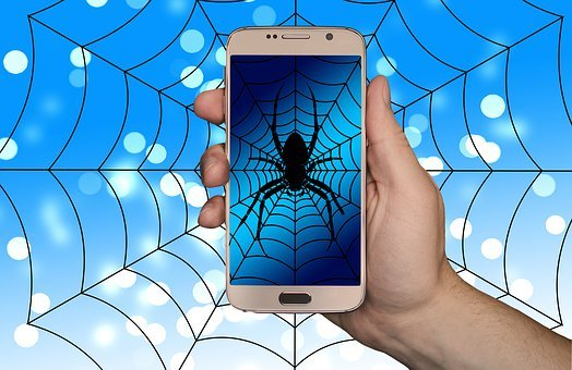 Smartphone, Hand, Web, Cobweb, Spider, Internet