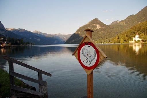 Grundlsee, Austria, Alps, Lake, Brand, Ban, Swan