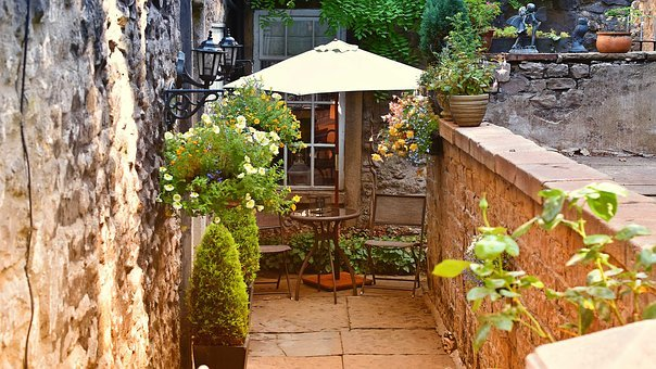 Garden, Home, Courtyard, Plant, Nature, Lifestyle