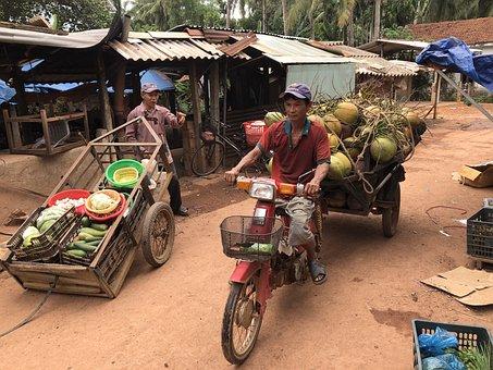 Motorcycle, Bike, Coconut, Vehicle, Speed