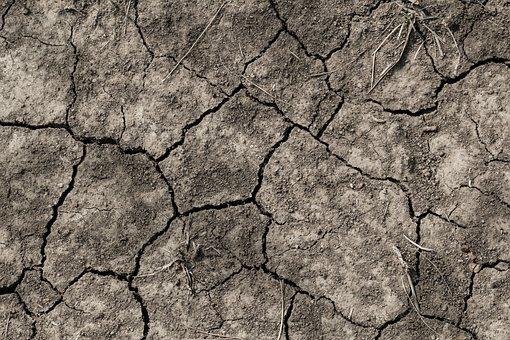 Soil, Heatwave, Heat, Environment, Summer, Climate
