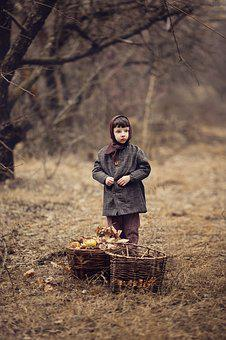 Boy, The Ussr, Apples, Autumn, Apple Orchard, Wartime