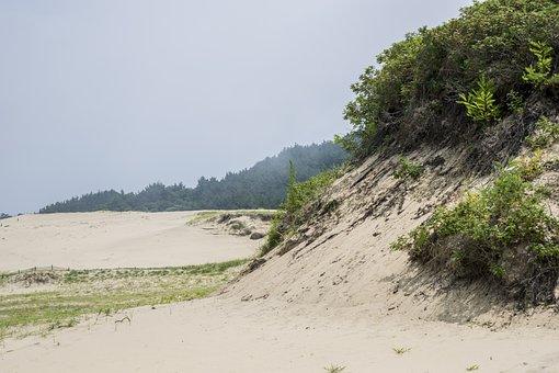 The Heat, Desert, Sand, Tourism, Swelter, Beach
